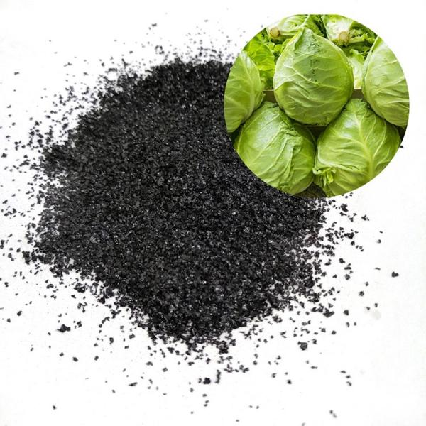 Vermicompost Humic Acid Organic Fertilizer #2 image